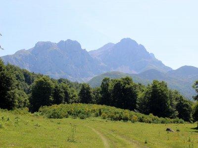Buggy tour through Picos de Europa 1 hour