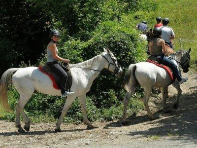 Horse riding tour in Llavorsí (Lleida) - 2 hours