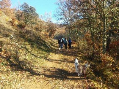 Multi-adventure weekend 2 activities Cistierna