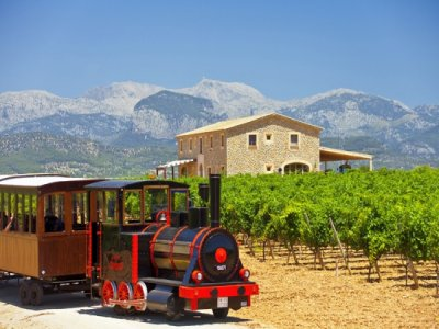 Mallorca Wine Express