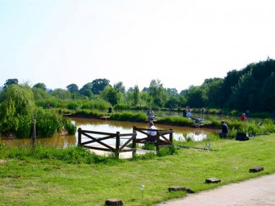 Beechwood Park Fishing