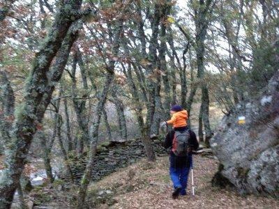Level 1 trekking in Sierra de Guadarrama