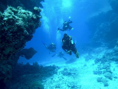 Diving baptism in Costa Tropical 3 hours
