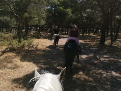 Horse ride at sunset with dinner Torremolinos