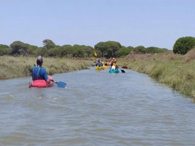Canoe route through Odiel marshes in Huelva