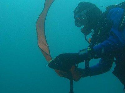 Bracknell Sub Aqua Club