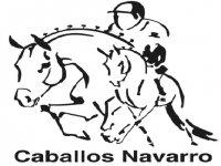 Caballos Navarro