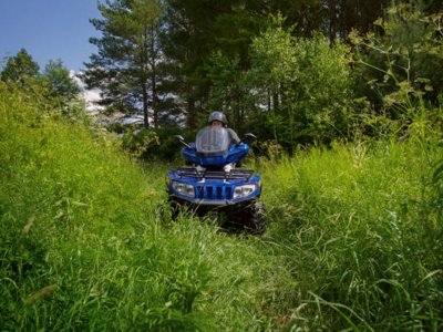 Quad bike route in forest Aragonese Pre-Pyrenees