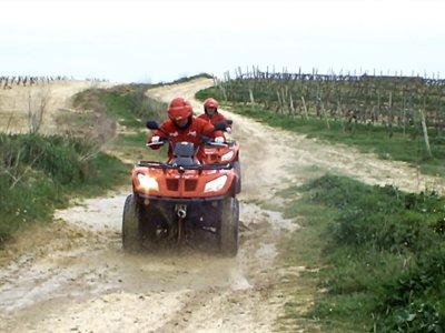 Two-seater quad route through Aro vineyards 1 hour