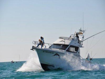 Llobarrete Pesca