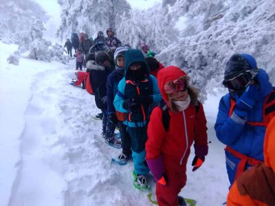 Snowshoeing and adult mushing route in Encamp