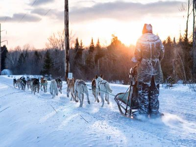Snowshoeing and mushing route children in Encamp