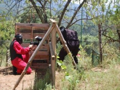 Monkey Paintball Team Building