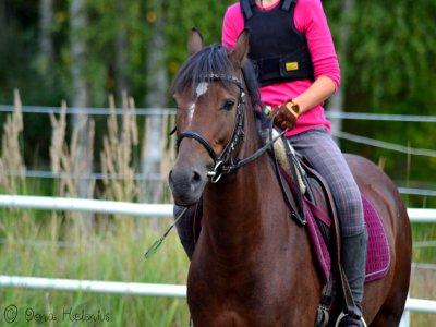 Tick Fen Riding Centre