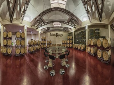 Wine tasting and snack winery Monreal del Llano