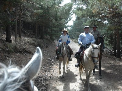 Horseback ride through La Barrosa 2 hours