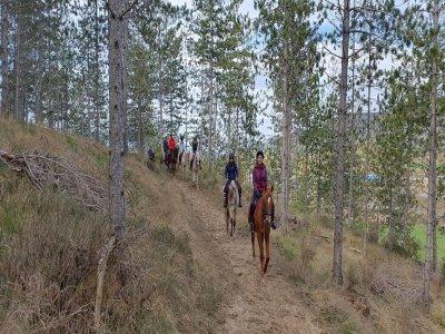 Horse riding through Añezcar 90 minutes