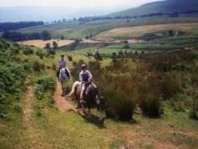 Mid Wales Off Road Horse Riding