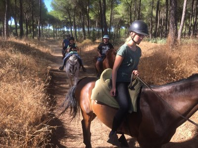 Horse ride through El Aljarafe adults 4 hours