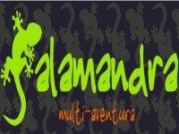 Salamandra Multi-aventura Team Building