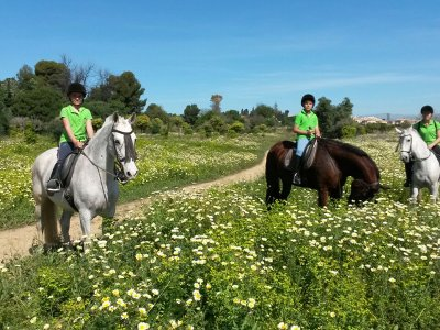 1 hour horse riding tour through Torremolinos