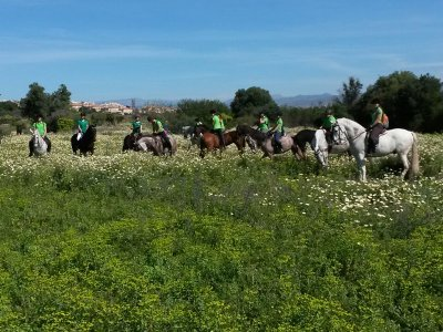 2-hour horse riding tour through Torremolinos