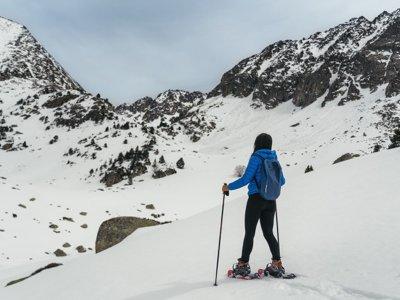 Snowshoeing route to Pico Peñalara 7 hrs