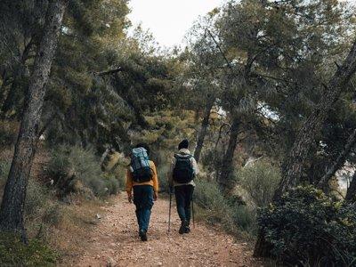 Hiking to the Dehesa de Boyal de Alpedrete 2 hours