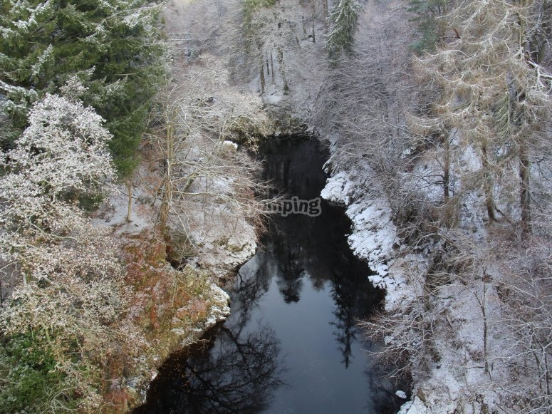 Swing in the Winter