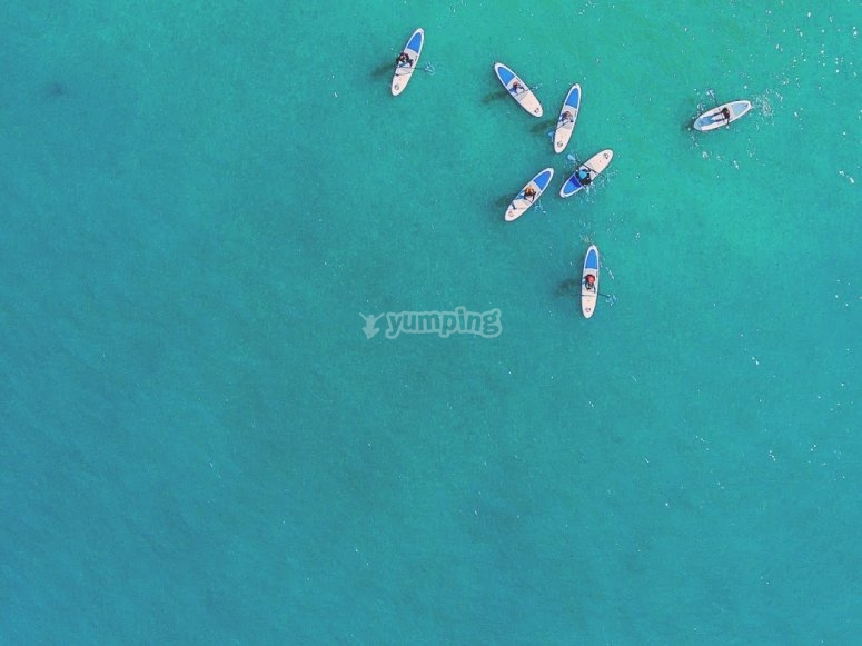 Overhead shot of paddlers