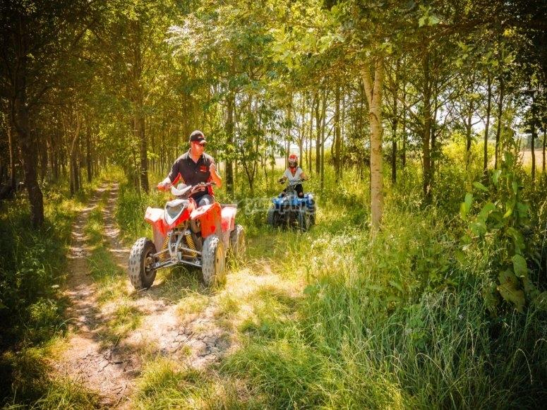 Trek through the forest