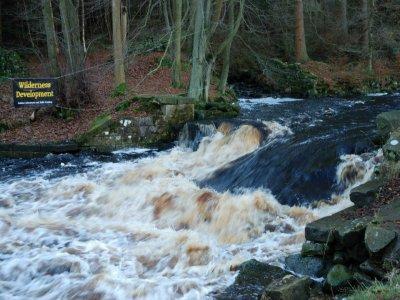 White Water Kayak Taster Session in Bury