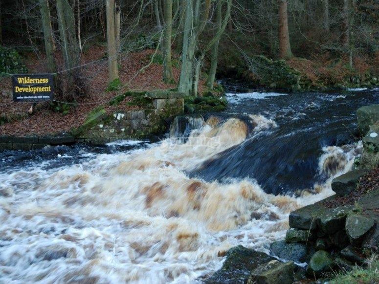 Tackling the rapids