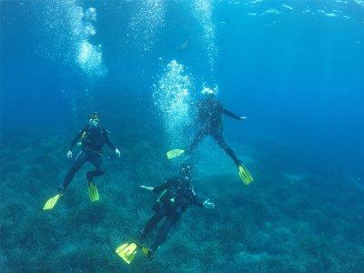 Open Water Diver Course in Cabo de Gata Reserve