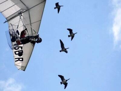 Microlight Flight in Henstridge for 30 minutes