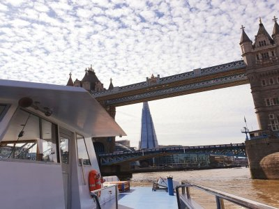 Short Cruise from Westminster 30 min