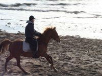 Learn how to canter with us