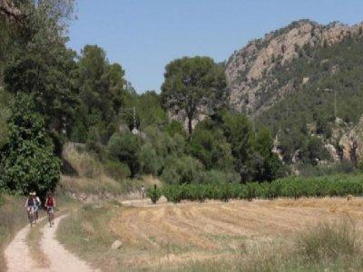 BTM ride Camino de Sirga - Tarragona