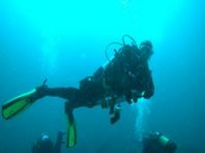 Fathom and Blues Diving