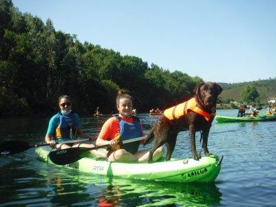 Kayak route with dog in Eiras Vigo reservoir