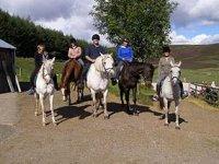 Pony parties