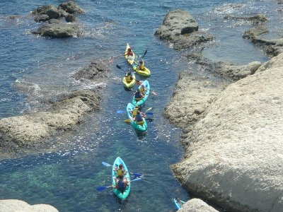Kayak route through Cala del Aceite Conil 2 hours