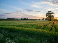 Trek through 50 acres of land