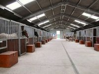 Large stables