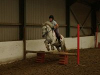 Showjumping at Houston Farm Riding School