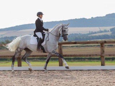 Appin Equestrian Centre