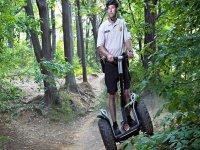 Segwaying through woodland