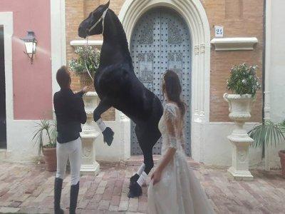 Manicaball Rutas a caballo