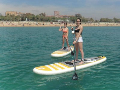Stand Up Surf School Paddle Surf