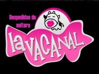 Bici Barra Lavacanal